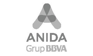 Anida Grupo BBVA